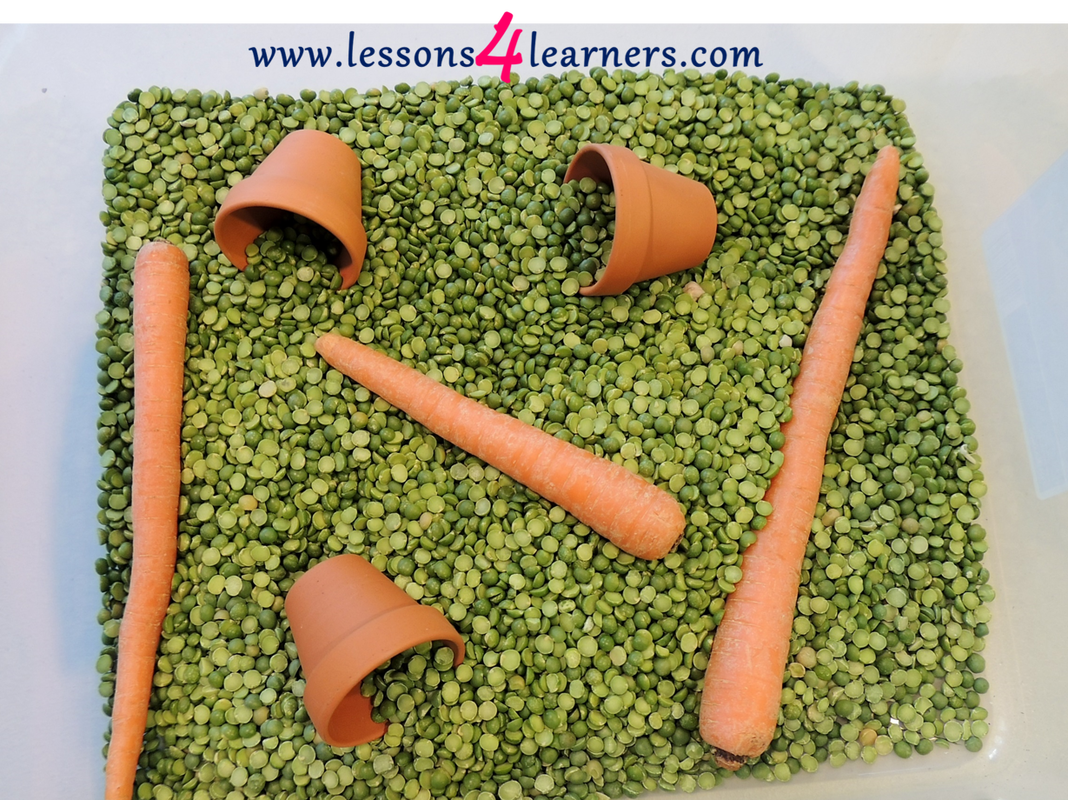 Peas and Carrots Sensory Bin