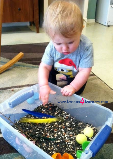 Bird Seed Sensory Table